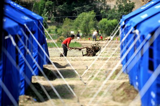图文:文县元茨头村一位村民在临时帐篷旁耕田