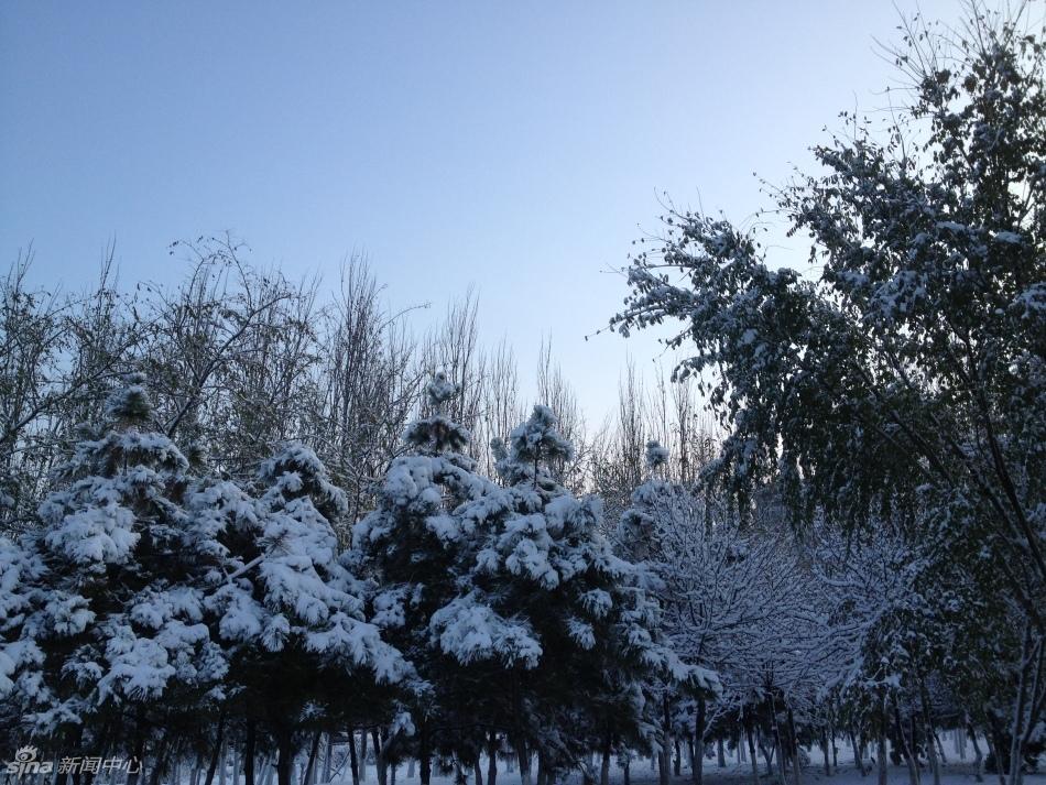 沈阳降下入冬以来最强降雪