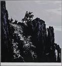 朝霞-41x41-1977年