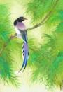 陈佩秋-竹林小鸟
