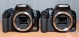 佳能500D 相机外观