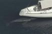 迷途幼鲸将安乐死