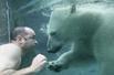 与北极熊共泳