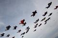 跳伞者在空中拼成队形
