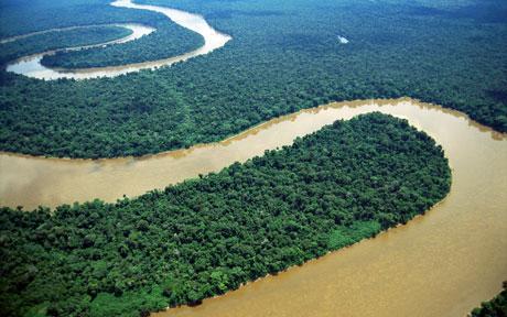高温贫雨致亚马逊河水位降至40年来最低点