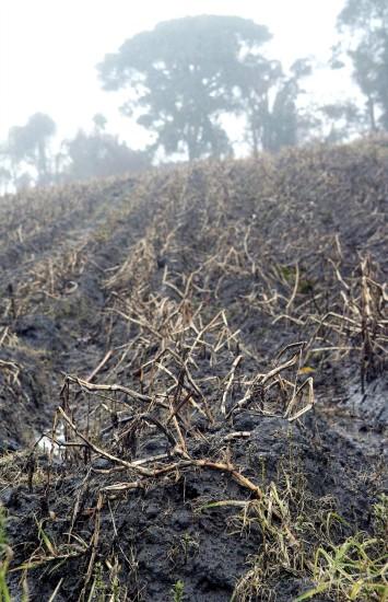 组图:哥斯达黎加火山持续喷发