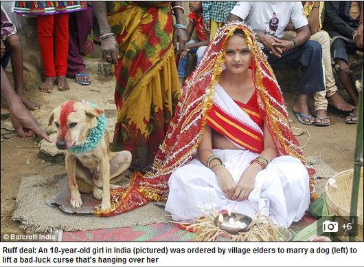 """已嫁给流浪狗Sheru的蒙达表示,一旦""""魔咒""""解除后,她便会立刻改嫁,嫁给一个正常的男人。"""