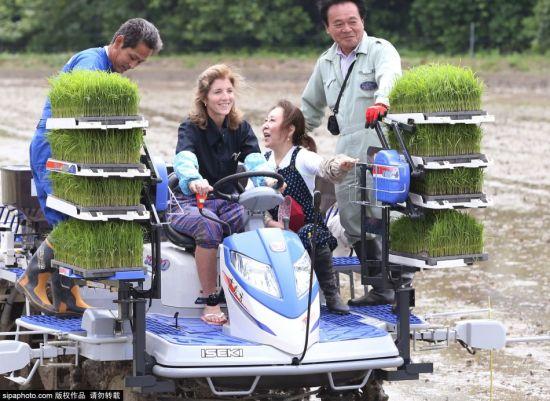 当地时间2015年6月14日,日本下关,美国驻日本大使卡罗琳·肯尼迪在日本首相夫人安倍昭惠的陪同下造访下关市,两人还亲自下田插秧,体验做农活的感觉。(供图:希帕中国)