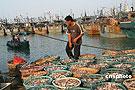 出海渔船纷纷回港避风