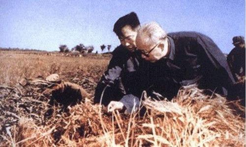 1977年6月,万里任中共安徽省委第一书记。图为万里在安徽农村考察。