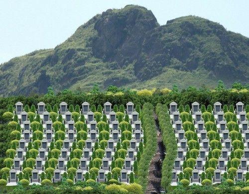 2014年北京地区居民的殡葬消费平均达到42837元
