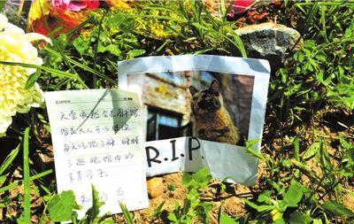 """学生写信缅怀""""馆长""""(记者陶冉/摄)"""