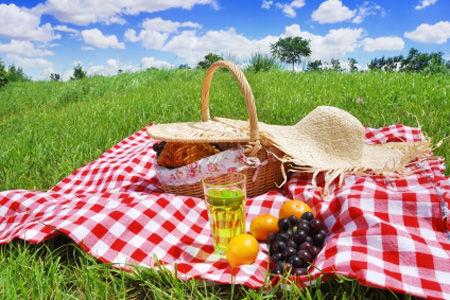 风景远山野餐食物