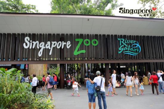带孩子旅行不能错过的新加坡动物园