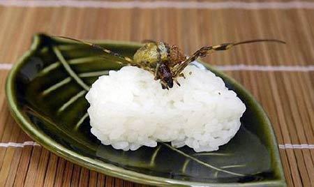 日本让人毛骨悚然的昆虫料理(组图)