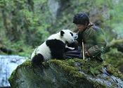小卢与小熊猫成为心灵相通的挚友