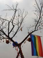 音乐节上的许愿树