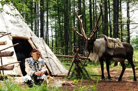 """敖鲁古雅鄂温克部落 最后的""""酋长"""""""