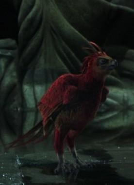 《哈利-波特》十周年回忆录之十大特殊配角(6)