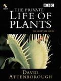 《植物私生活》