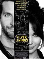 《幸福线》(The Silver Linings Playbook)