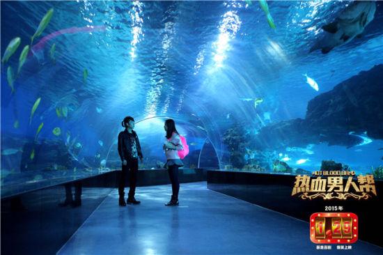 壁纸 海底 海底世界 海洋馆 水族馆 550_366