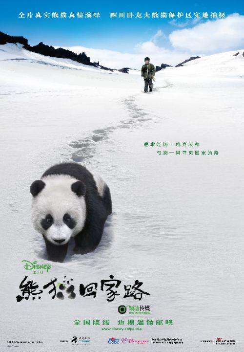 09剧情新片《熊猫回家路》DVD修正中字迅雷下载