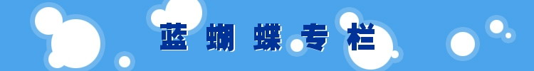 蓝蝴蝶专栏