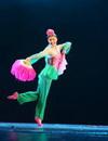 中国民族民间舞蹈精品