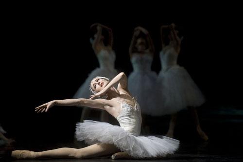 资料图片:瑞典皇家芭蕾舞团剧照(2)