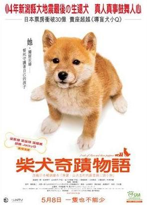 资料:日本影片《柴犬奇迹物语》简介