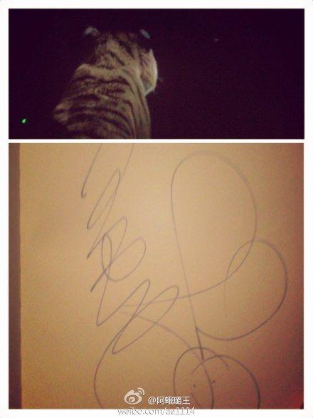 网友看《少年派》索王力宏签名