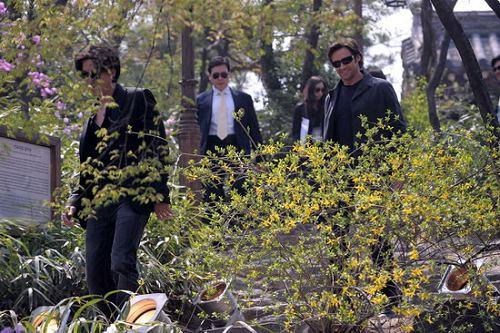 图文:《金刚狼》宣传-休杰克曼从花丛中走来
