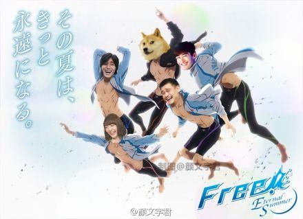 《Free!》第二季海报(图:@颜文字君)