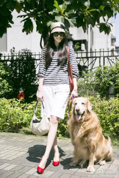 吴佩慈乐观陪伴爱犬