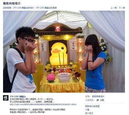 台湾网友味大黄鸭设超萌灵堂吊唁