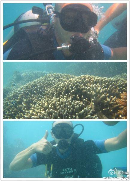 陆毅深海潜水展运动魅力