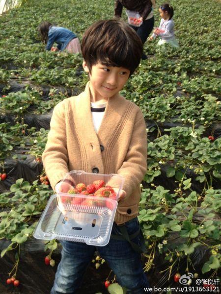 天天摘草莓甜笑露酒窝