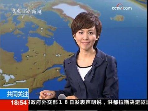 央视主持人欧阳夏丹