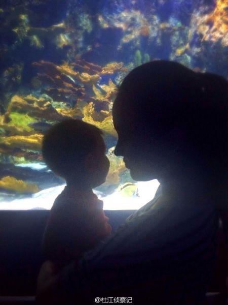霍思燕与儿子剪影照