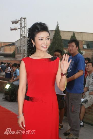 图文:09明月盛典红毯星光-李丹阳打招呼