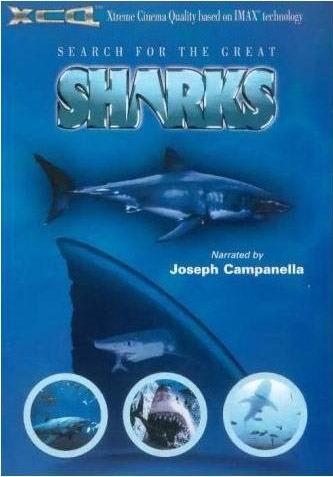 《麻瓜看电影》第34期:《寻找鲨鱼》