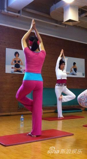 古典美女何晴变身瑜伽高手