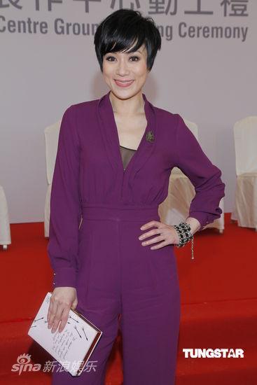 有份出席活动的大部分演员是前无线艺人,包括张可颐(微博),林文龙