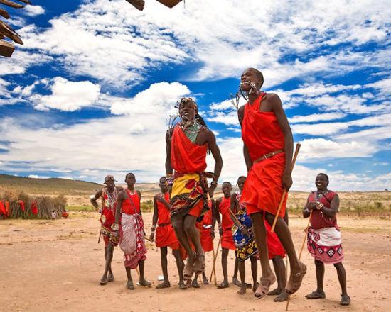 肯尼亚:为大象而奔走