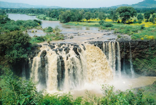 埃塞俄比亚:人类学101