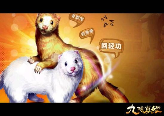 盘点:网游史上最萌宠物