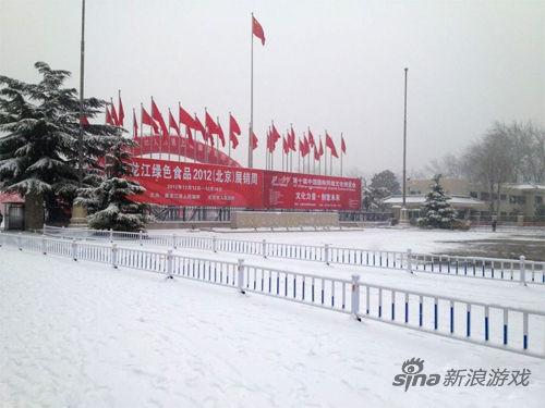 一场大雪让网博会外场披上了银白色的大衣