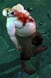 文件:Mon-walking-corpse3.jpg
