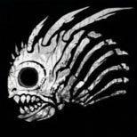 揭秘《风暴英雄》小鱼人奔波儿灞为何如此强力